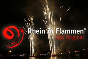 rif-mit-logo-mit-bild